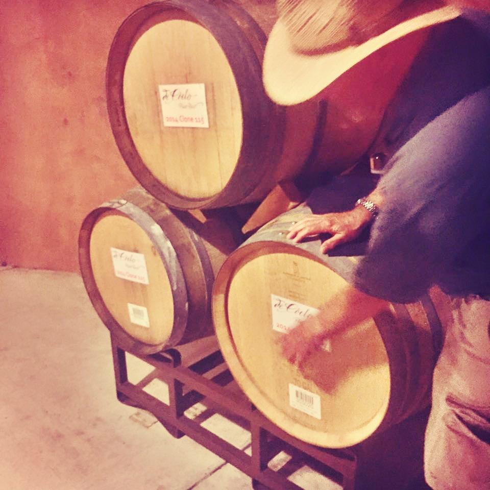 Wine Cellar Tasting